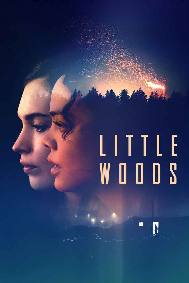 Little Woods Poster