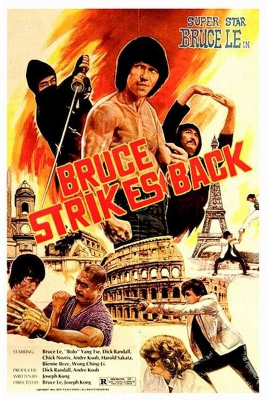 The Ninja Strikes Back Poster