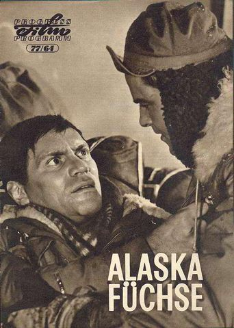 Alaska - Foxes Poster