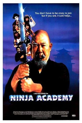 Ninja Academy Poster