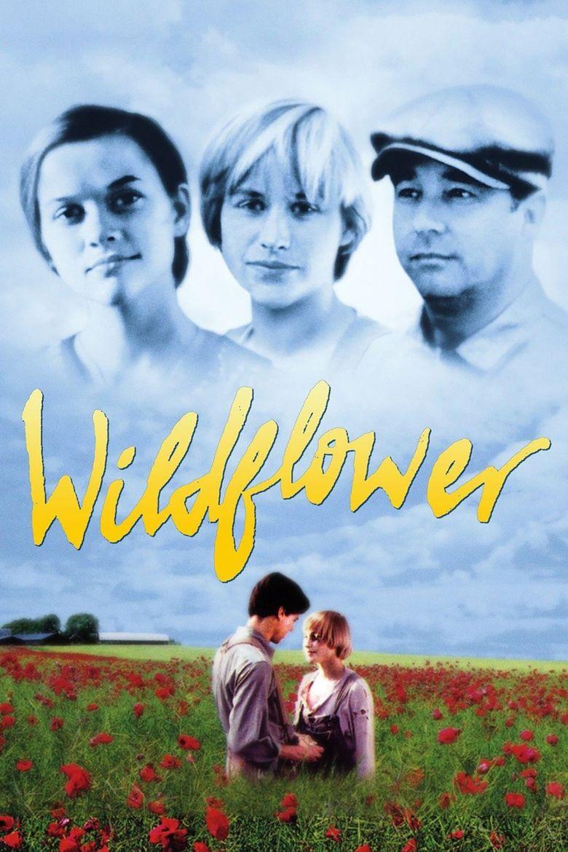 Watch Wildflower