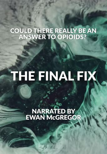 The Final Fix Poster