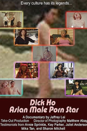 Dick Ho: Asian Male Porn Star Poster