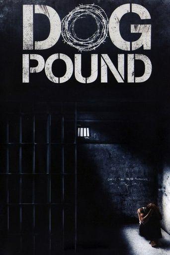 Dog Pound Poster