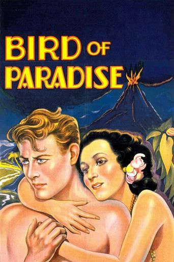 Watch Bird of Paradise