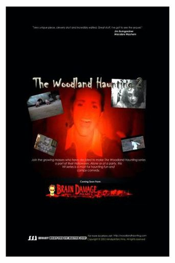 The Woodland Haunting 2 Poster