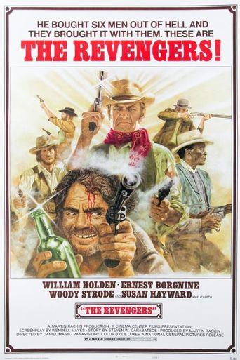 The Revengers Poster