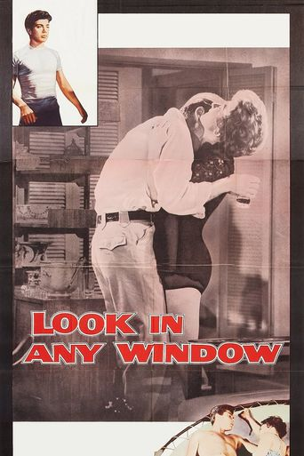 Look in Any Window Poster