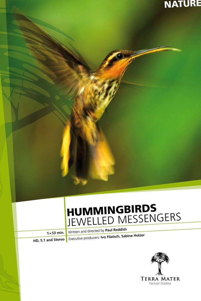 Hummingbirds: Jewelled Messengers Poster