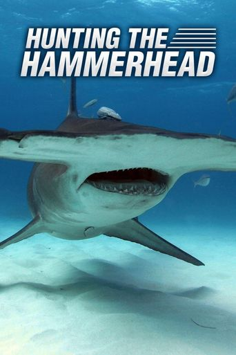 Hunting the Hammerhead Poster
