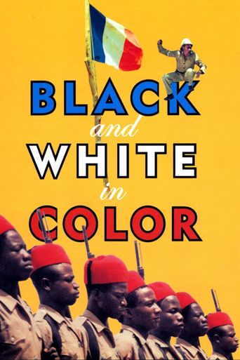 Black and White in Color Poster