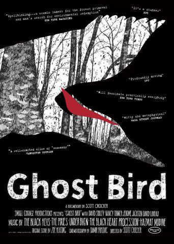 Ghost Bird Poster