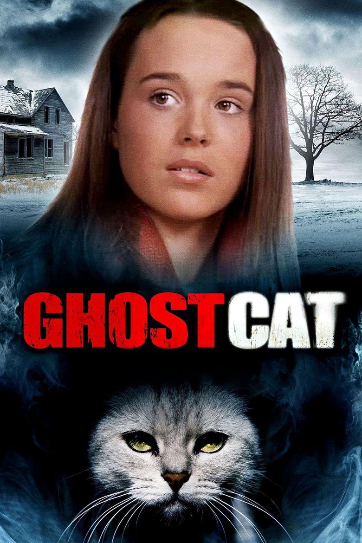 Mrs. Ashboro's Cat Poster