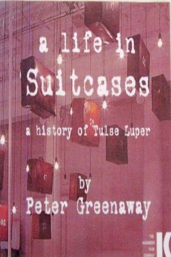 A Life in Suitcases Poster