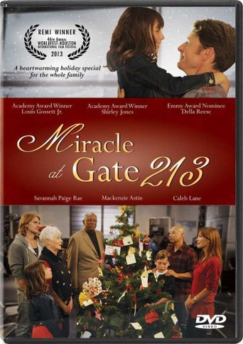Miracle at Gate 213 Poster