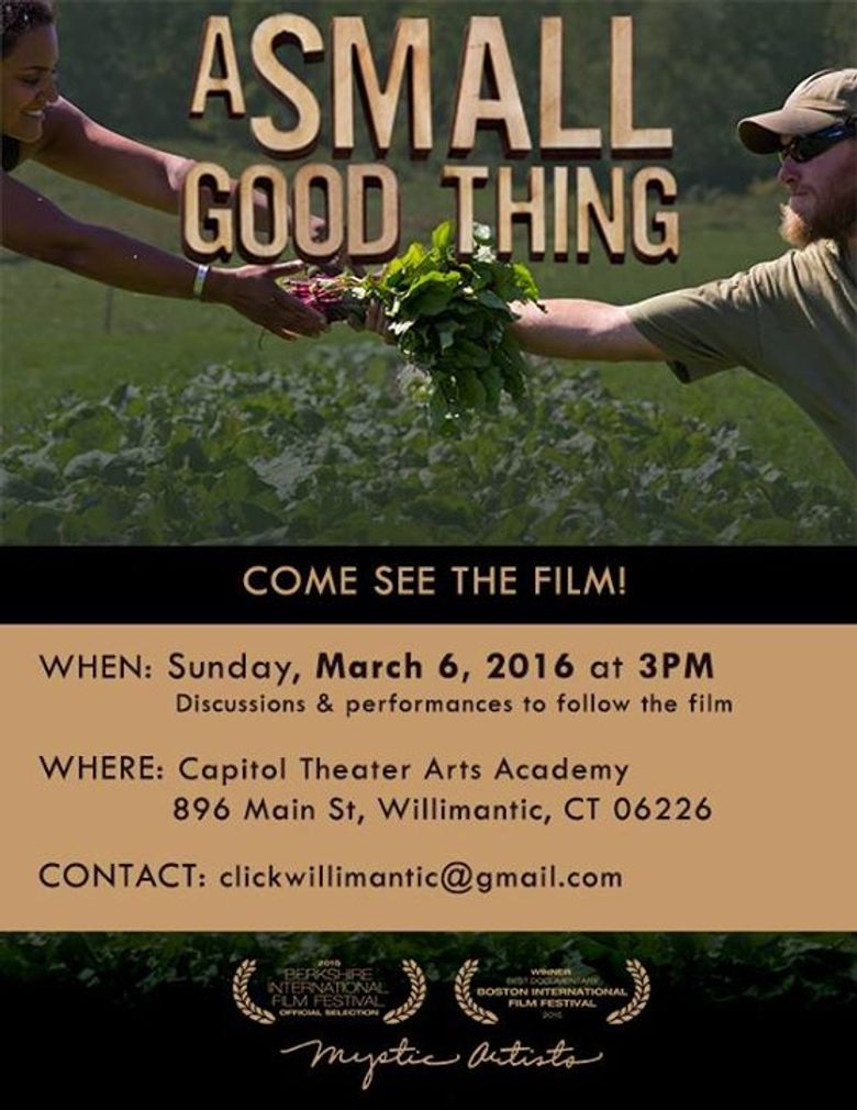 A Small Good Thing Poster
