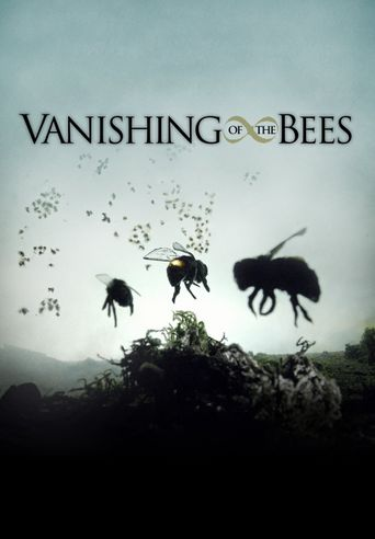 Vanishing of the Bees Poster