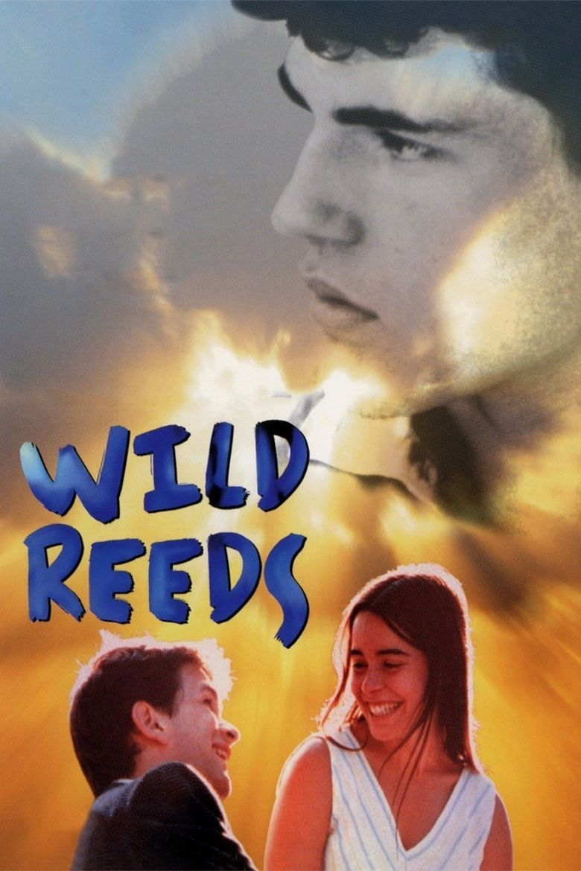 Wild Reeds Poster