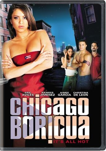 Chicago Boricua Poster