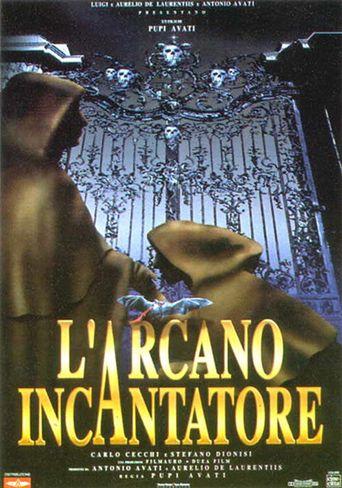 Arcane Sorcerer Poster