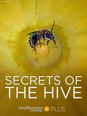 Secrets of the Hive Poster