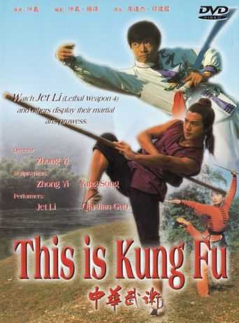 This Is Kung Fu Poster