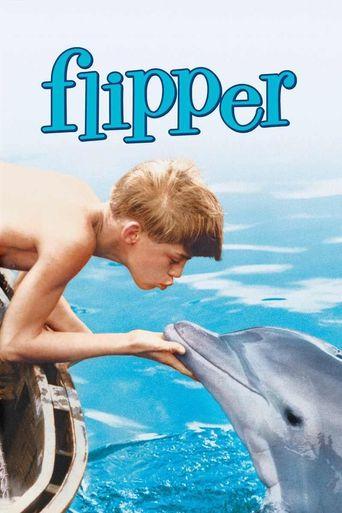 Watch Flipper