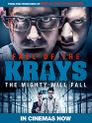 Watch The Fall of the Krays