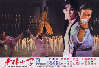 Young Hero of Shaolin Poster
