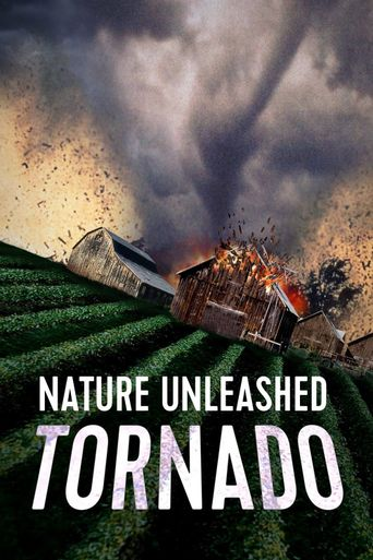 Nature Unleashed: Tornado Poster