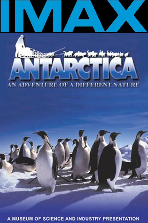 Antarctica Poster