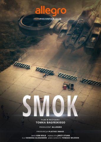 Legendy Polskie: Smok Poster