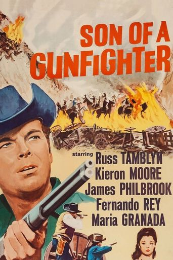 Son of a Gunfighter Poster