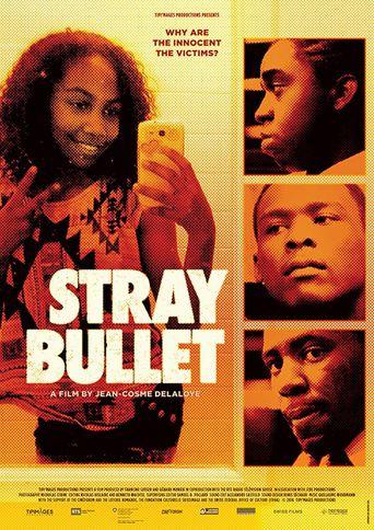 Stray Bullet Poster