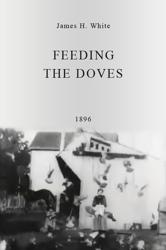 Feeding the Doves Poster