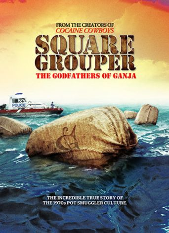 Square Grouper Poster