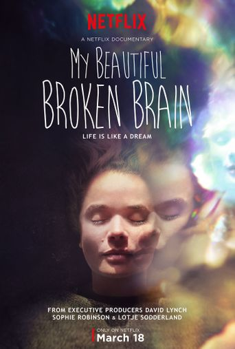 My Beautiful Broken Brain Poster