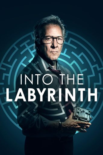 Into the Labyrinth Poster