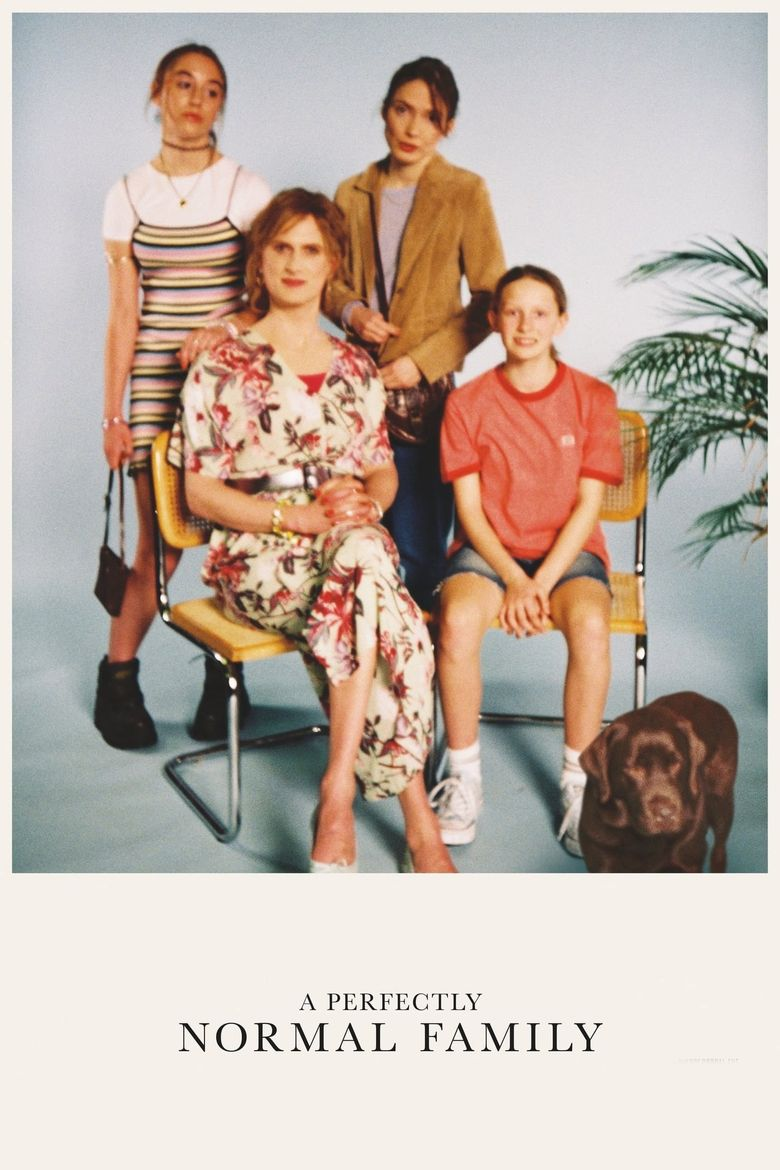 A Perfectly Normal Family Poster