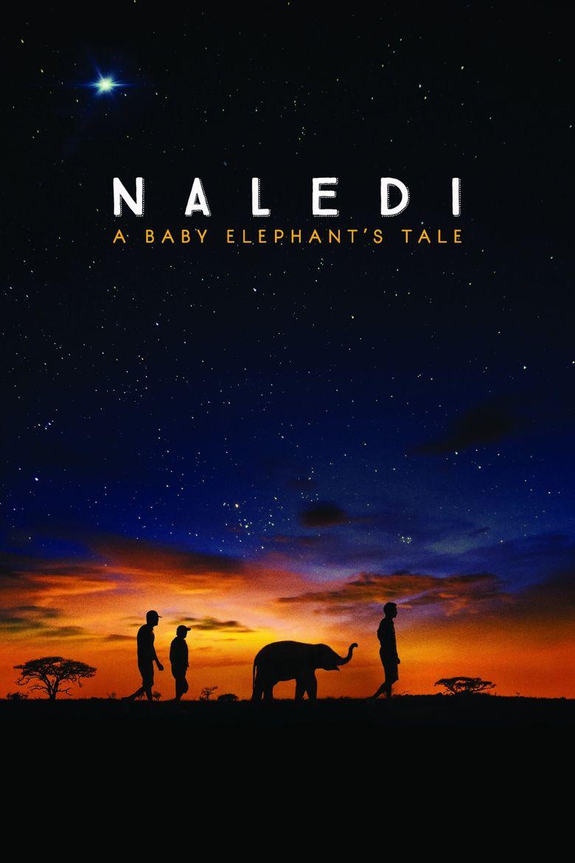 Naledi: A Baby Elephant's Tale Poster
