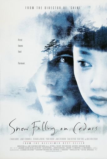 Snow Falling on Cedars Poster