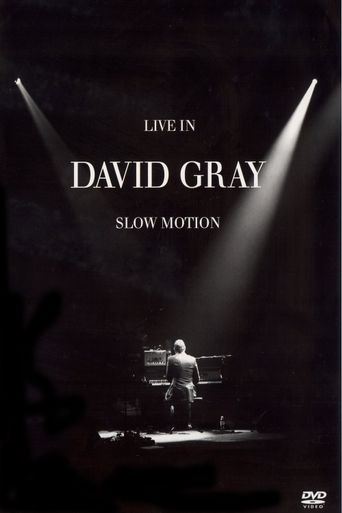 David Gray: LIVE in Slow Motion Poster
