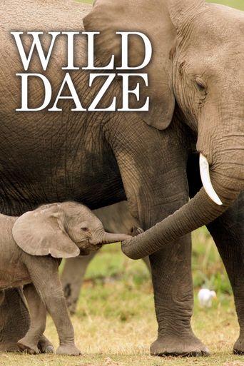 Wild Daze Poster