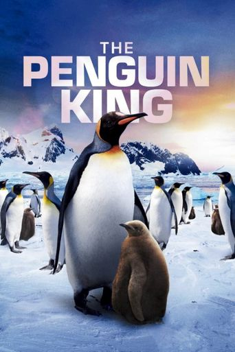 The Penguin King Poster