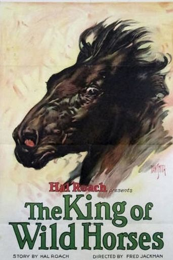 The King of the Wild Horses Poster