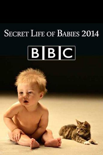 Secret Life of Babies Poster