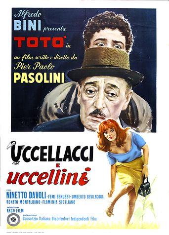 Hawks and Sparrows Poster