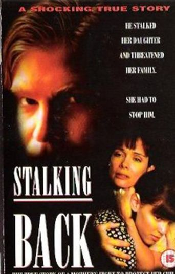 Moment of Truth: Stalking Back Poster