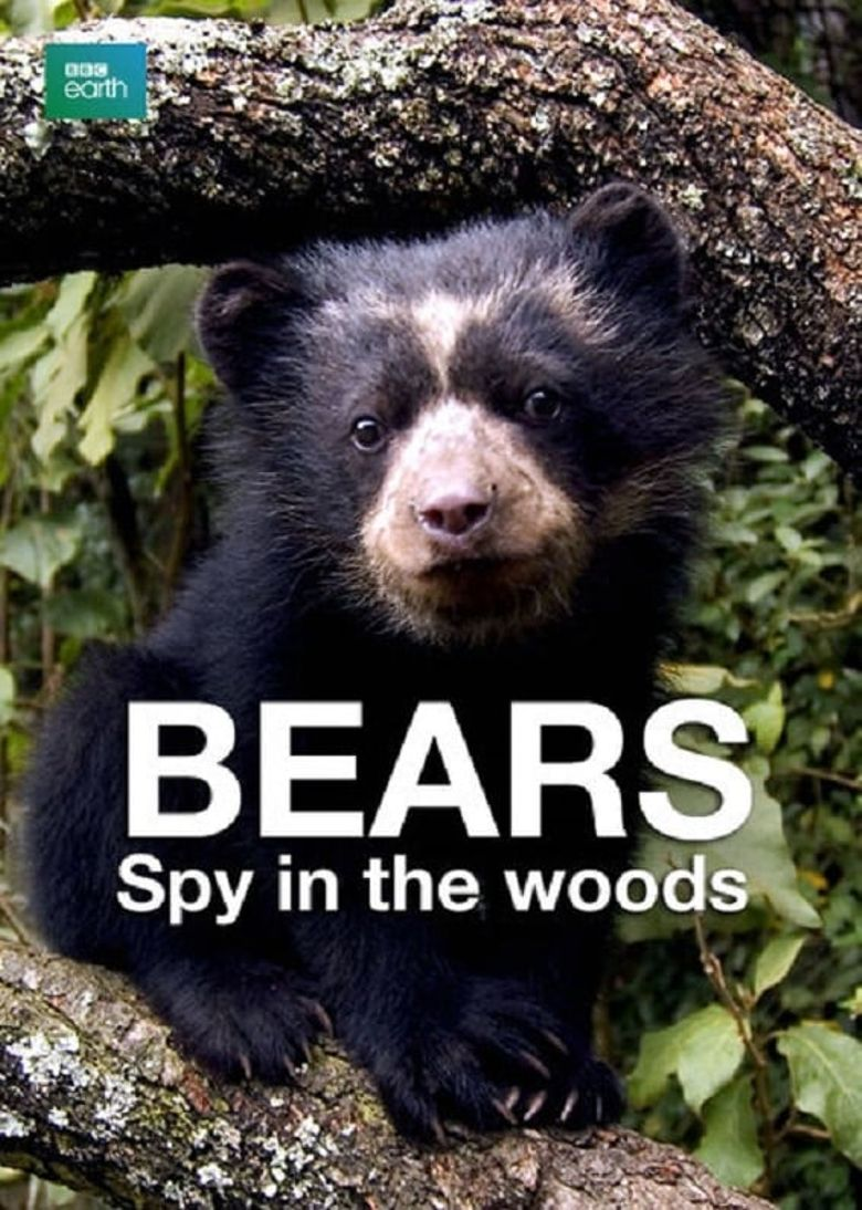 Bears: Spy in the Woods Poster