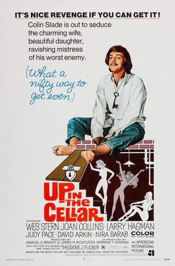 Up in the Cellar Poster